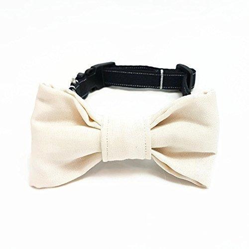 Hundehalsband mit Fliege - Der Große Tag (Weiß Leine Haustier Große)
