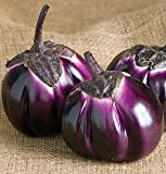PLAT FIRM Germination Les graines PLATFIRM-Heirloom organiques 600 Graines de Purple Barbarella Aubergine Graine Rare asiatique Solanum légumes fruits jardin Semences F109