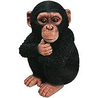 Vivid Arts XRL-CHM2-F Baby Chimpanzee Resin Ornament