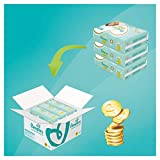 Pampers Premium Protection Windeln, Gr.6, 13-18kg, Monatsbox, 1er Pack (1 x 120 Stück)