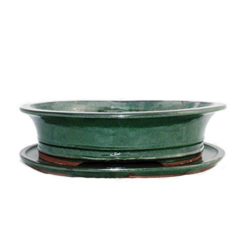 Bonsai Bol avec sous assiette Taille 5 - Vert - Ovale - Modèle O4 - L 31 cm - B 24,5 cm - H 8,5 cm