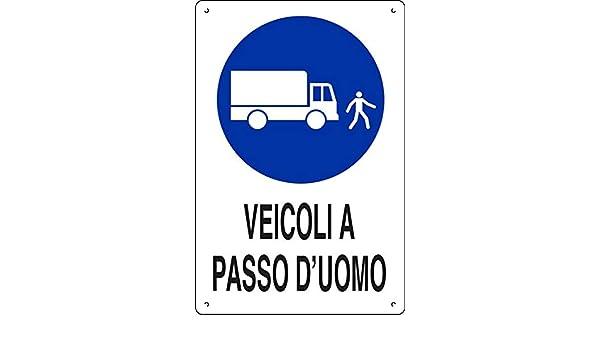 PIXLEMON Cartello polionda cm 40x30 Veicoli A Passo DUOMO