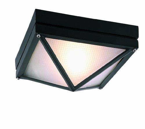 Trans Globe Lighting 43301 BK 1-Light Flush-mount, Black by Trans Globe Lighting -