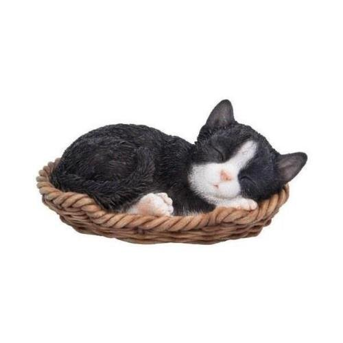 Vivid Arts Pet Pal schwarz & weißes Kätzchen im Korb -
