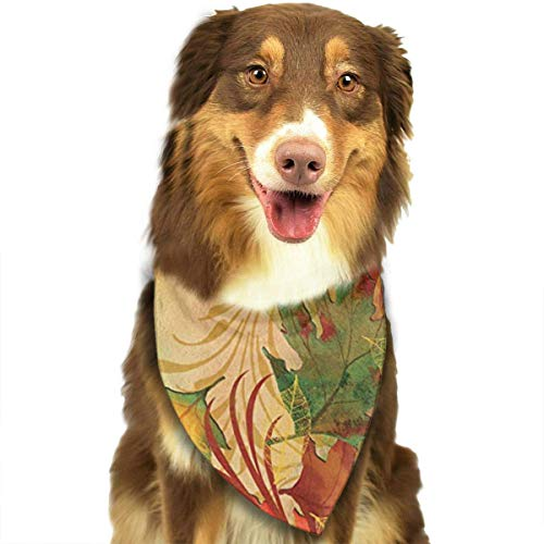 Hipiyoled Autumn Aria Mix Colour Pet Bandana Multifunctional Headwear -