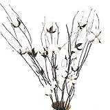 Bille de boule de coton naturel blanc 20-25
