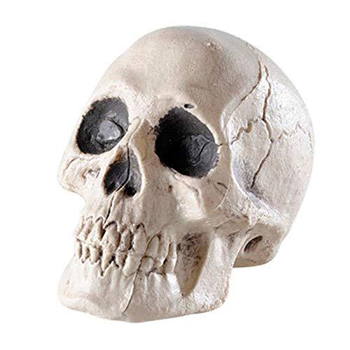 NET TOYS Totenschädel Totenkopf Schädel Halloween Deko Skelett Dekoration Dekoschädel Totenkopfschädel Dekoartikel