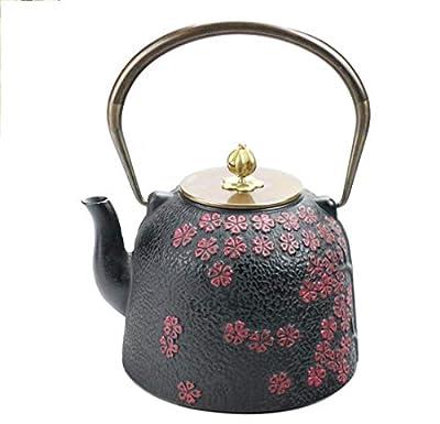 Thé Set Théière Pot En Fonte Bol De Fer En Fonte Pot Bouilloire