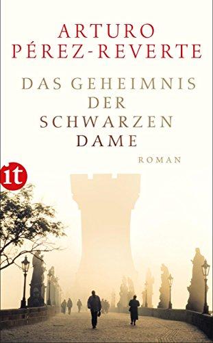 Das Geheimnis der schwarzen Dame: Roman (insel taschenbuch) -