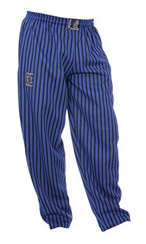 FTSD, Bodybuilding Hose elastische Sporthose, hochwertige Bodybuilding Kleidung, bequeme Fitnesshose, Blau, XL (Hosen Hose Gestreifte)