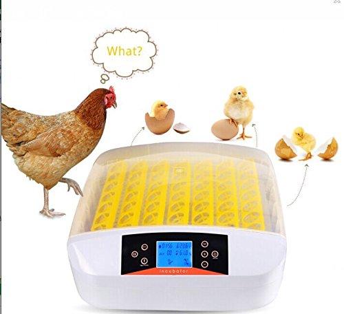 Befied incubatrice automatica schiusa macchina cova allevatore per 56 uova incubazione professionale brevettata controllo di temperatura per gallina anatra quaglia tutti uccelli