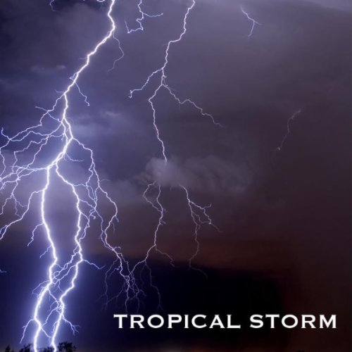 Thunderstorm Sounds and Rain S...