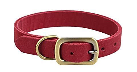 Rantow Polished Durable Leather Pet Collar For Small Dogs or Cats, Neck Size 24-30cm, 1.5cm Wide, Super Strong Soft Genuine Leather Puppy Kitty Collars (Red) - Ampio Cane Collare