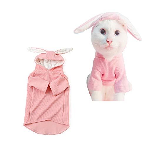 Morbuy Katzen Welpe Kostüm Kapuzenpullis, Haustiere Pullover Sweater Hasen Ohren Halloween Haustier Kostüme Nettes Cosplay für Kleine Katzen Welpen (M, ()