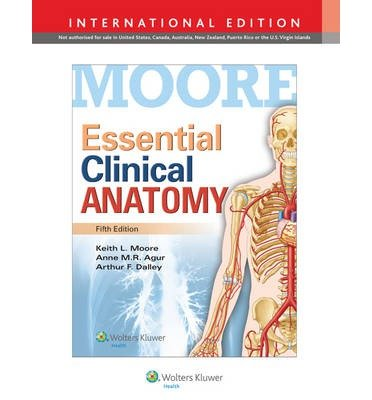 [(Essential Clinical Anatomy)] [ By (author) Keith L. Moore, By (author) Anne M. R. Agur, By (author) Arthur F. Dalley ] [April, 2014]