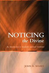 Noticing the Divine: An Introduction to Interfaith Spiritual Guidance (Spiritual Directors International Books)