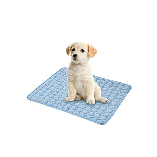 The Fellie Kühlmatte für Hunde, ungiftig, Sommer, Schlafbett für kleine Hunde, Haustiere, Katzen, Welpen