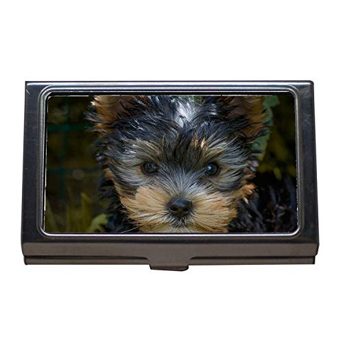 Visitenkartenetui, Hundewelpen Yorkshire Terrier Welpen Yorkshire Terrier, Visitenkartenetui Edelstahl