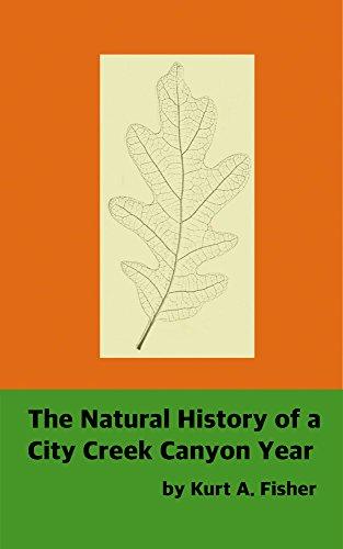The Natural History of a City Creek Canyon Year (English Edition)