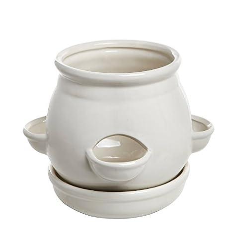 décoratifs 4ouvertures de côté Blanc Design en céramique pour fleurs et plantes Jardinière Pot à nourriture avec soucoupe