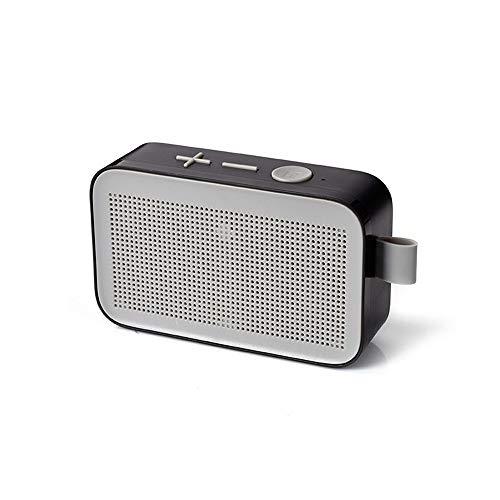 Mini Portable Bluetooth Lautsprecher Speaker mit Multifunktions FM Radio/USB/TF/für Smartphone-Tablet-Laptop (Grau)