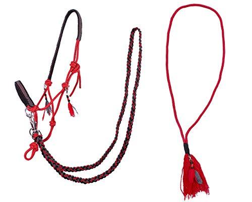 Arbo-Inox Knotenhalfter Zügel Halsring Kombiset Knotenhalfter-Set (Cob Vollblut, Rot)