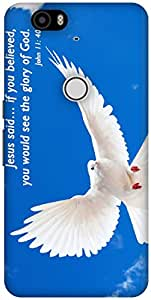The Racoon Grip Glory of God hard plastic printed back case / cover for Huawei Nexus 6P