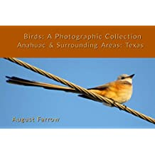Birds: A Photographic Collection: Anahuac & Surrounding Areas: Texas (Birds of Anahuac Book 1) (English Edition)