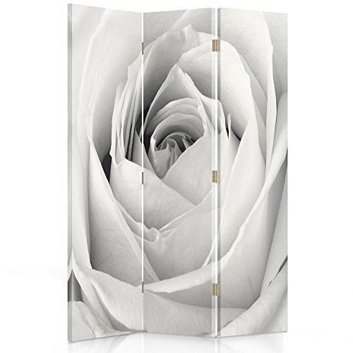 Feeby Frames. Raumteiler, Ggedruckten aufCanvas, Leinwand Wandschirme, dekorative Trennwand, Paravent einseitig, 3 teilig (110x150 cm), WEIßE ROSE