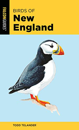 Birds of New England (Falcon Pocket Guides) (English Edition)