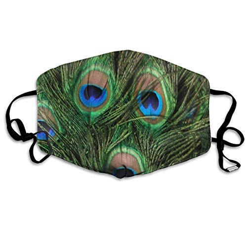 HUSDFS Mouth Maske Peacock Feather Anti Dust Face Mouth Cover Mask Respirator Cotton Protective Face Safety Warm Windproof Mask