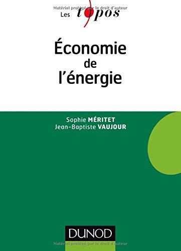 Economie de l'énergie par Sophie Méritet