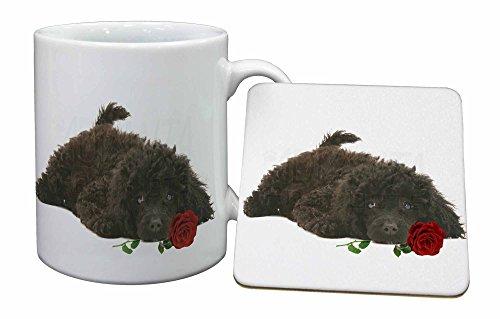 Advanta - Mug Coaster Set Zwergpudel Hund mit roten Rose Becher und Untersetzer Tier Ge Rote Rose Becher