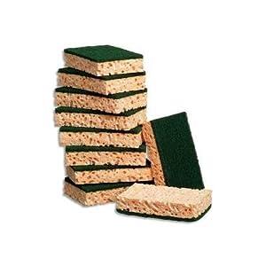 Pack of 10tampon-éponges Rectangular Vegetable Green