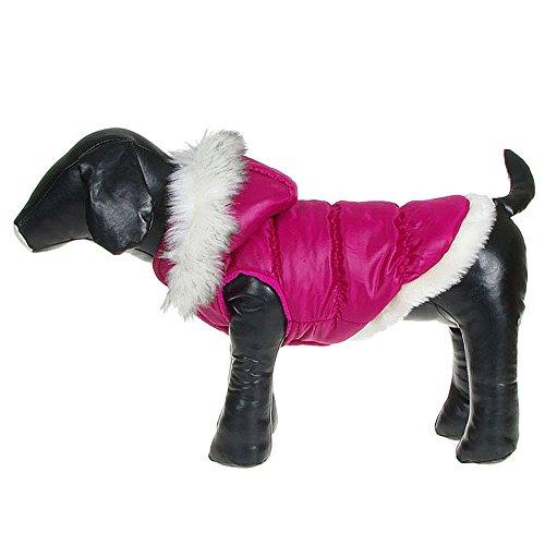 QZBAOSHU Navidad para Mascotas Ropa para Perros de Down Chaquetas de Invierno Ropa de Algodón Caliente para Gatos del Perro (XS, Azul)