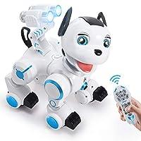 SGILE Remote Control RC Robot Toys Interactive Walking Singing Dancing Smart Robotics for Kids Boys Girls Programmable Gesture Sensing Robot