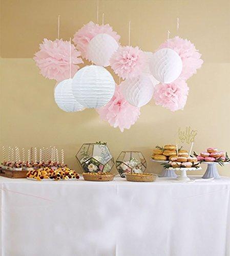 Anokay Hochzeitsdeko Set - 12er Seidenpapier PomPom Wabenbälle Laterne Lampion rund Lampenschirm weiß rosa - Pompons für Hochzeit Party Geburtstag Mädchen Deko