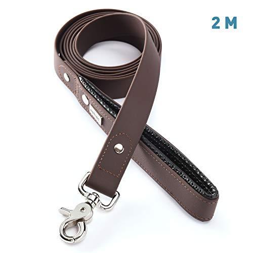 Zoom IMG-1 pettec guinzaglio per cani resistente