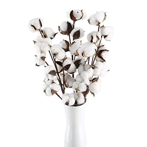 Huaesin 3pz fiori secchi cotone fiori artificiali da interno finti fiori essiccati per decorazioni casa ufficio balcone vaso fai da te interno esterno(bianco)