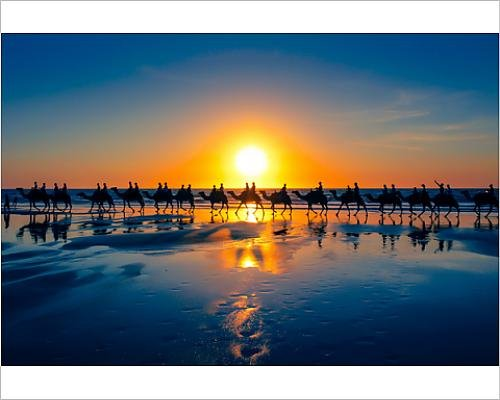 photographic-print-of-the-famous-camel-train-cable-beach-western-australia