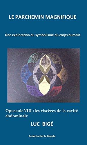 Le Parchemin Magnifique : Opuscule VIII, les viscères de la cavité abdominale: Une exploration du symbolisme du corps humain