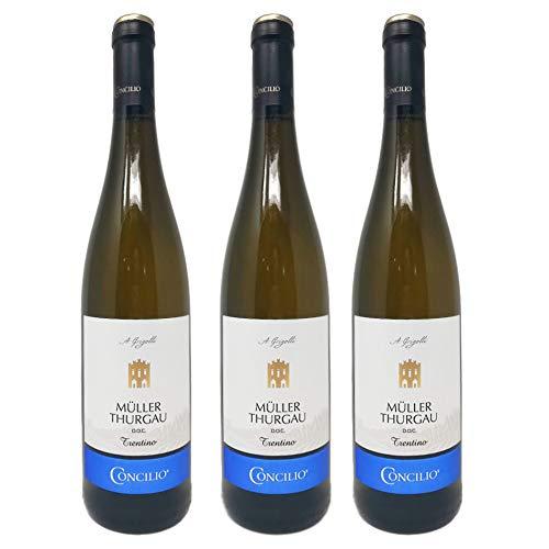3 Bottiglie Vino Muller Thurgau Concilio
