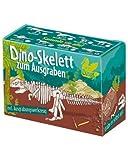 Moses 40140 Dino Skelett