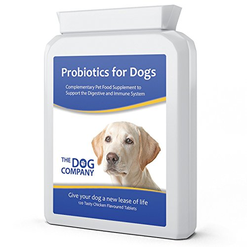 PDF Descargar Dog Probiotics with Digestive Enzymes  Relieves