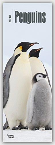 Penguins – Pinguine 2018: Original BrownTrout-Kalender - Slimeline [Mehrsprachig] [Kalender] (Slimline-Kalender)