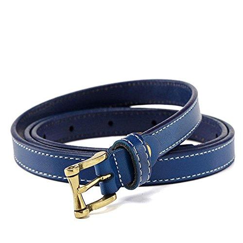 Womens Leather Belt Solid Color Basic Pu Leather Dress Belt Buckle Blue Dress Decoration 107cm Fashion