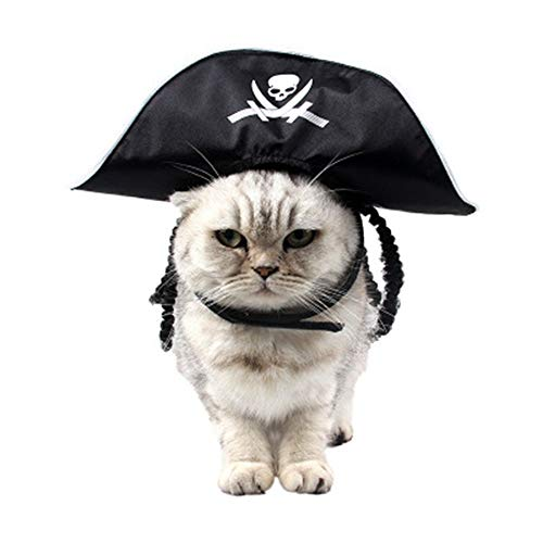 hat Halloween - kostüm spielt eine festtagsmütze frühling und Herbst Dreidimensionale perücke weiße Pirat Hund Hut ()