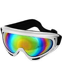 Silver Tone Frame Coloured Len Protective Adult Sport Snow Ski Goggles