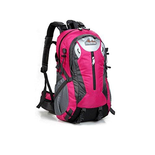 40L modelli nuova esplosione DeyiLong all'aperto sacchetto di alpinismo uomo pacchetto escursioni signora con un sistema di sospensione rosa