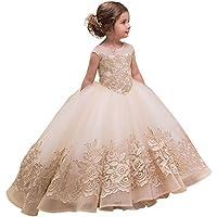Bambino piccolo Abiti da festa Vestito da ragazza di fiore per bambini  femminile Spettacolo di passerella 98a8945e121
